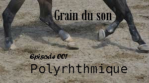 Le Graine du son_Module sonore 001_Polyrhythmique